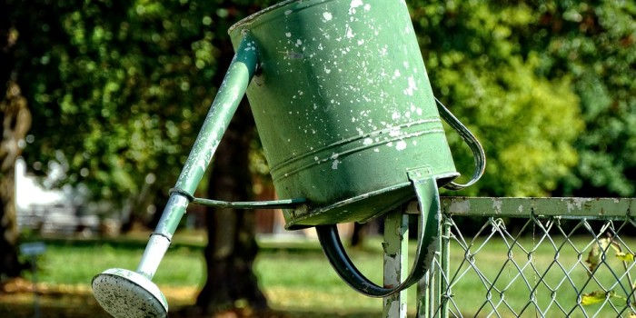 watering-can-930274_960_720